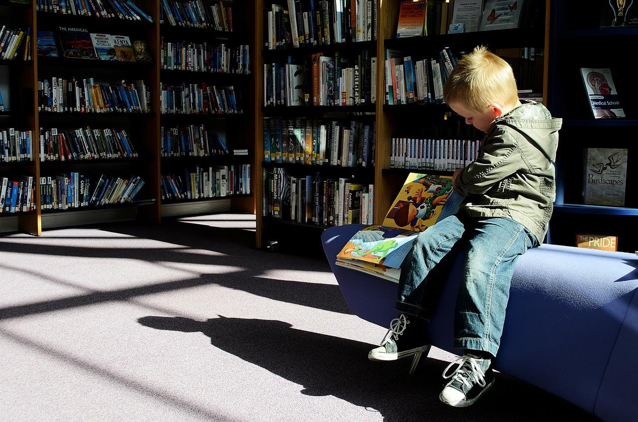 Storitve, ki jih knjižnice še ponujajo